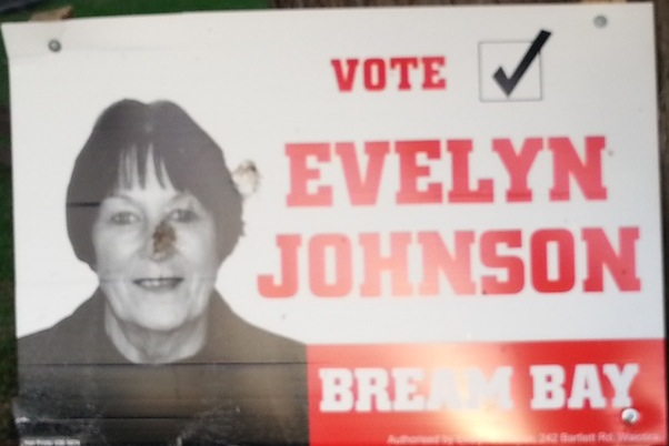 Evelyn Johnson - 2013 Local Election