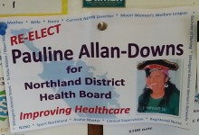 Pauline Allan-Downs - 2013 Local Election