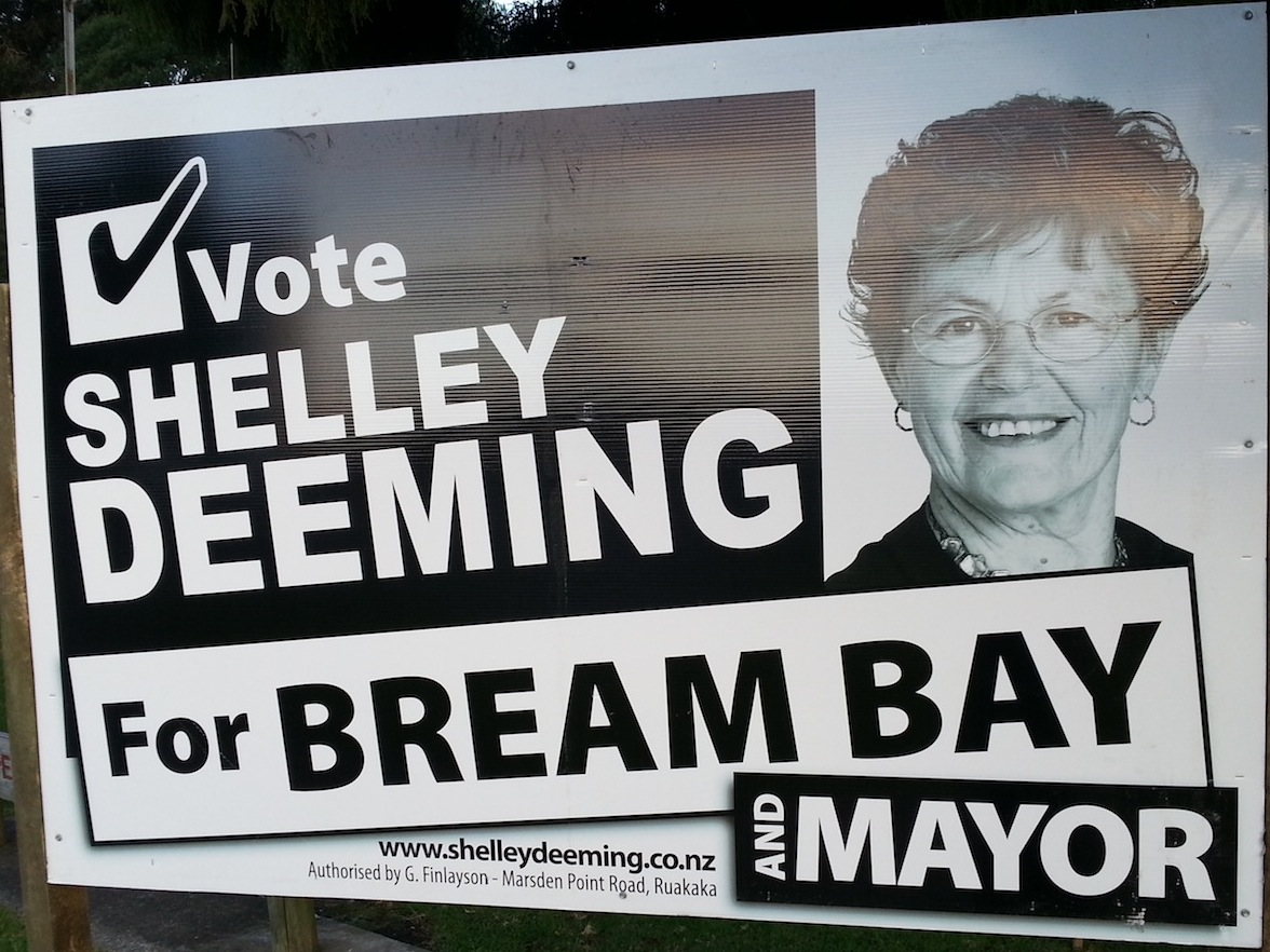 Shelley Deeming - 2013 Local Election