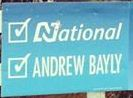 Andrew Bayly - National Party - 2014 General Election