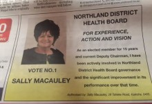Sally Macauley - 2016 Local Elections