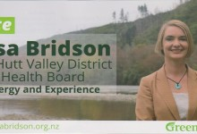 Lisa Bridson - 2016 Local Elections