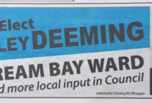 Shelley Deeming - 2016 Local Elections