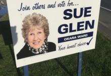 Sue Glen - 2016 Local Elections