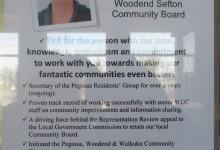 Rhonda Mather - 2016 Local Elections