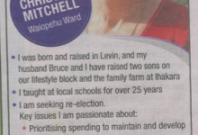 Christine Mitchell - 2016 Local Elections