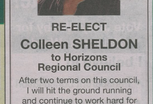 Colleen Sheldon - 2016 Local Elections