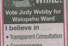 Judy Webby - 2016 Local Elections